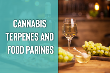Pairing Cannabis Terpenes with Food