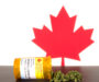 Cooking with CBD Oil – Why It's a Trend Across Canada