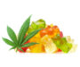 What Are CBD Edibles & Why Are They So Popular On The Canadian Market?